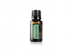 Grüne Minze / Spearmint / Mentha spicata, 15 ml